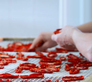 The selection of the Ciappa - sun dried tomatoes