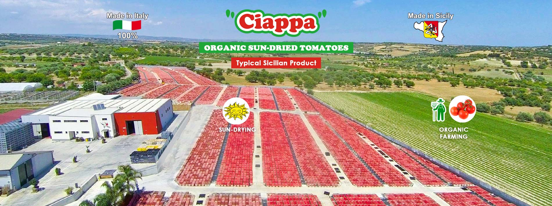 Sun-dried tomatoes - organic farming 100% Made in Sicily by Agriblea