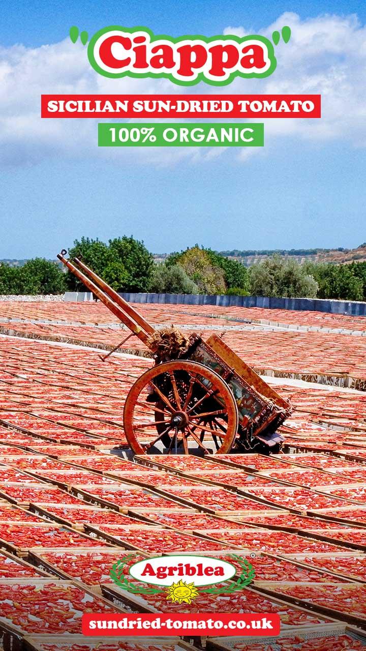 organic sun-dried tomato